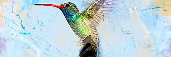 The Therapy of Bird and Flower Painting 1 - The Therapy of Bird and Flower Painting