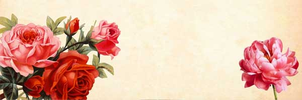 The Therapy of Bird and Flower Painting 2 - The Therapy of Bird and Flower Painting